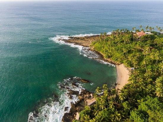 Palm Paradise Cabanas (Tangalle, Sri Lanka) - Feriested - anmeldelser - sammenligning af priser ...