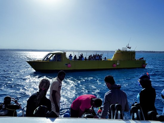 Scuba Hurghada Diving Center: 20180228_152657_large.jpg