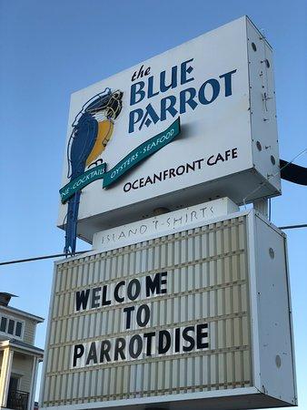 Blue Parrot Restaurant St George Island Fl