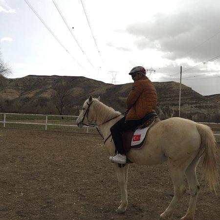 Akhal-Teke Horse Riding Center: photo0.jpg