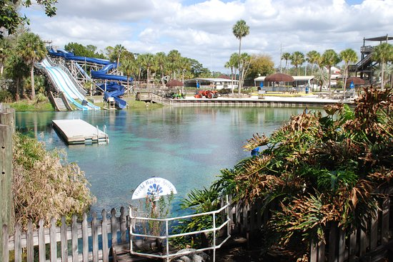 Weeki Wachee Springs Swimming Area