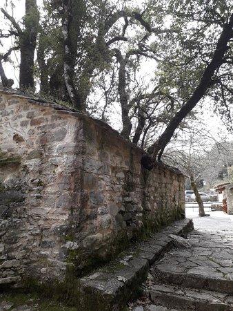 Vastas, Greece: 20180304_133341_large.jpg