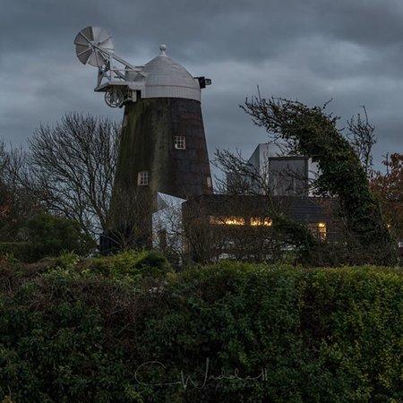 Hassocks, UK: Jill Windmill