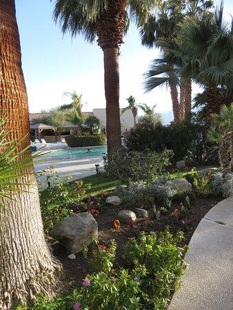 Walkway outside pools