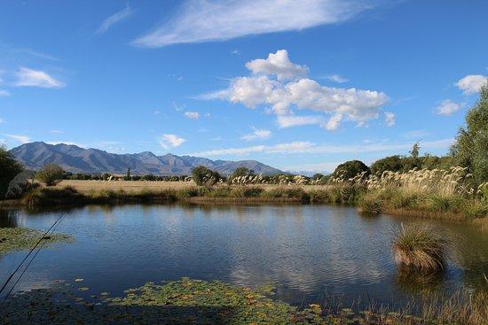 Twizel, Nya Zeeland: View From room.