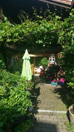 Schweigen-Rechtenbach, Germany: 20170605_173633_large.jpg