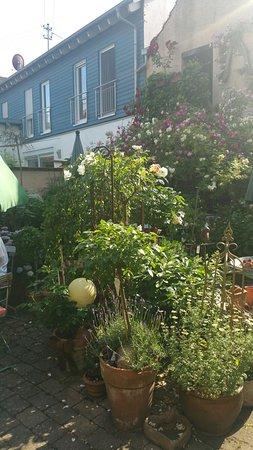 Schweigen-Rechtenbach, Germany: 20170605_173638_large.jpg