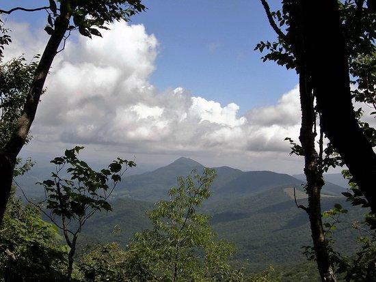 Todd, North Carolina: Scenic views are plentiful from the top of Elk Knob.