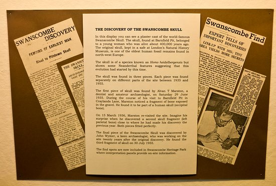 Dartford Borough Museum: The contemporary newspaper cuttings tell a story
