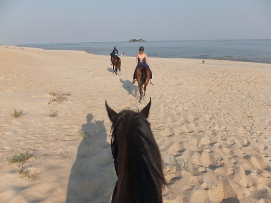 Horse ride from Kande Horse