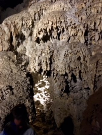 Mole Creek, Australia: Early parts of the cave had smaller stalactites.
