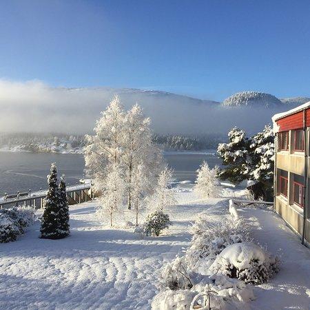 Byglandsfjord, Norvegia: Utsikt fra restauranten