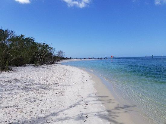 Vanderbilt Beach, Φλόριντα: 20180228_112453_large.jpg