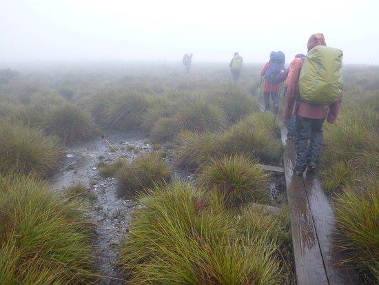 Hagley, Austrália: The mist
