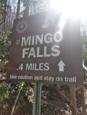 Mingo Falls: Great!!