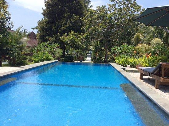 Salili Bungalow: The pool