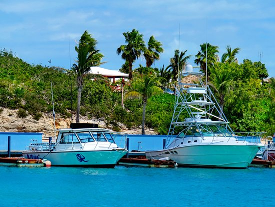 Harbour Club Villas & Marina: Just a short walk from the villas to dive boats in our marina