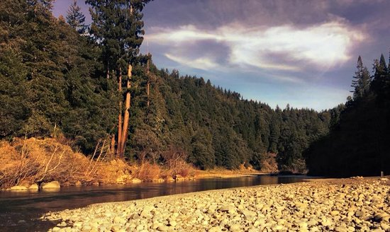 Picture Of Redwoods River Resort & Campground