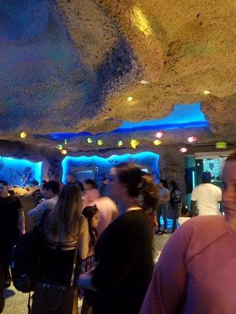 Aquarium Restaurant: 20180303_181348_large.jpg