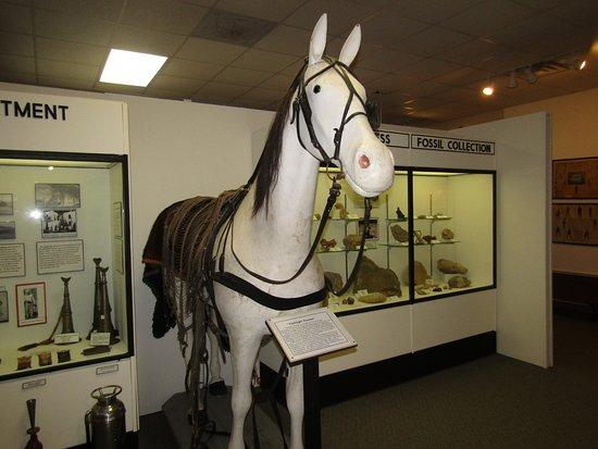 Prairie du Chien, Висконсин: The horse