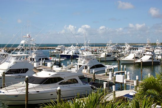 aaa5c54206d381 Property amenity - Picture of Abaco Beach Resort and Boat Harbour ...