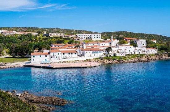 Cagliari: Amazing Asinara Island...