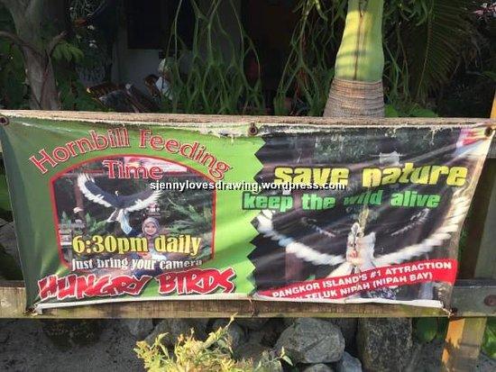 Пулау-Пангкор, Малайзия: The banner for daily hornbills feeding at Sunset View Chalet