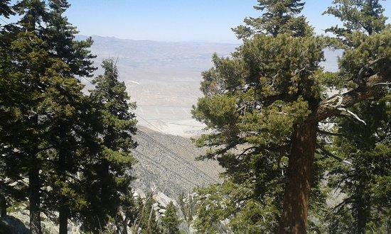 Idyllwild, Kalifornien: Mount San Jacinto State Park and Wilderness