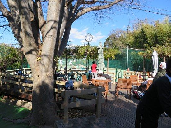 Wynn Village Tennis Club