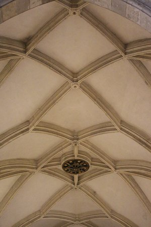 St. Martin's Cathedral (Dom svateho Martina): Ceiling