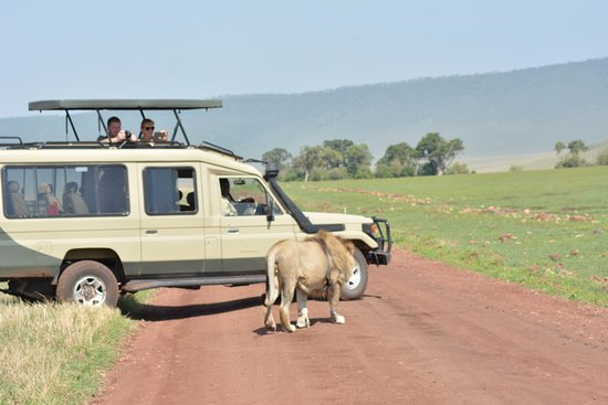 Tanganyika Outdoor Safari