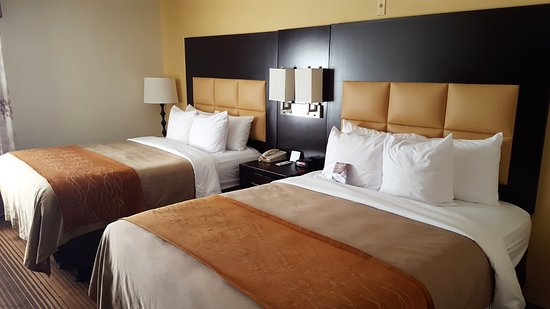 Comfort Inn: Two queen-sized beds ...
