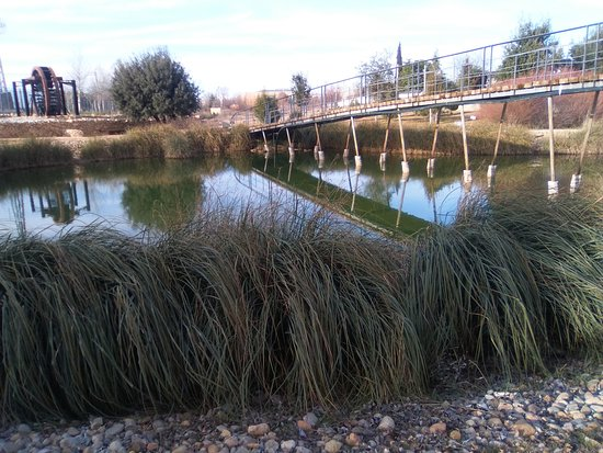 Laguna 1 y noria jardin botanico de castilla la mancha - Jardin botanico de castilla la mancha ...