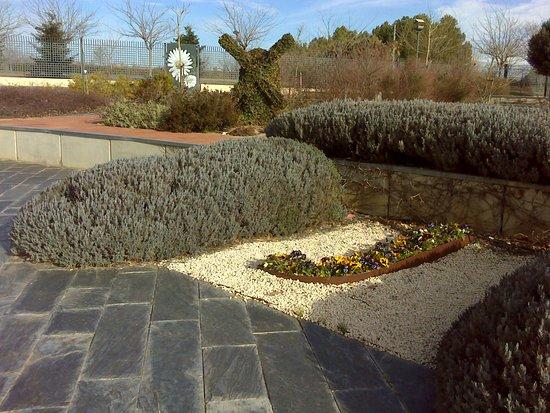 Molino de viento vegetal jardin botanico de castilla la for Jardin botanico albacete