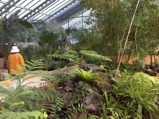 Laguna 2 jardin botanico de castilla la mancha for Jardin botanico albacete