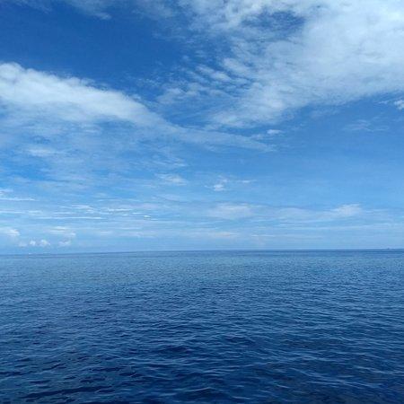 Fitzroy Island, Australia: photo2.jpg