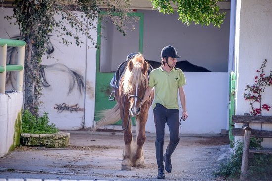 Riding Academy of Crete - Ippikos Riding Club: Our riders