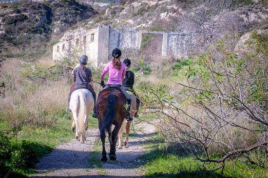 Riding Academy of Crete - Ippikos Riding Club: Mountain Rides