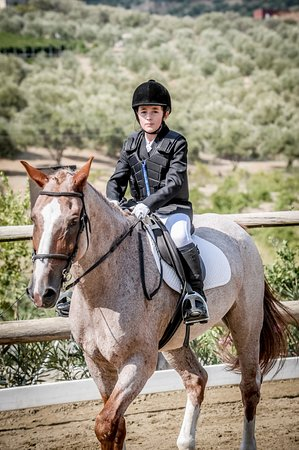 Riding Academy of Crete - Ippikos Riding Club: Riding Lessons
