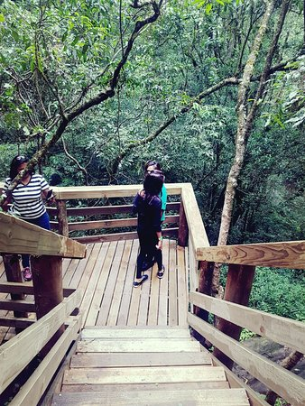 Graskop, South Africa: Steep wooden walk ways - not accessible to wheel chairs