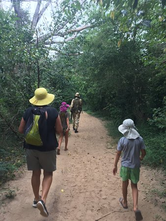 Kwale, Kenya: Enjoying the walk through the trees.