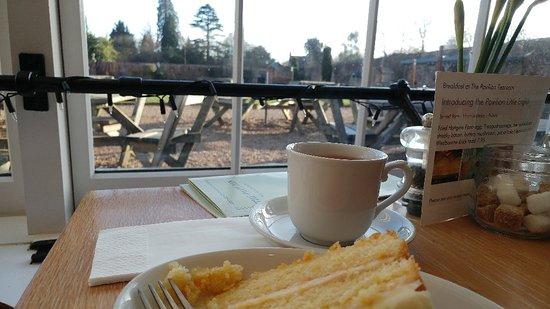Pavilion Tea Rooms Rowlands Castle Restaurant Reviews