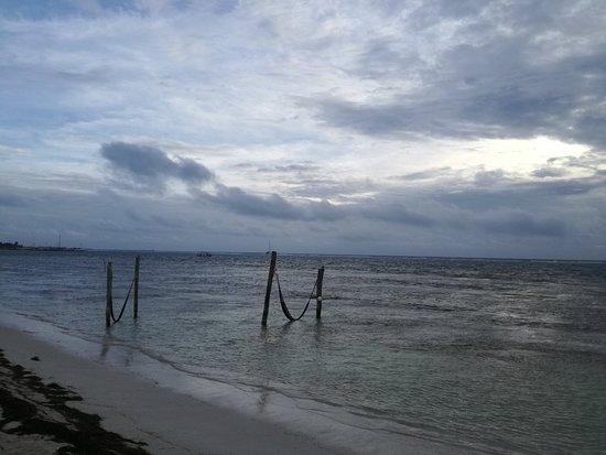 Mahahual Beach: IMG_20180121_083333_large.jpg