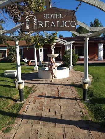 Realico-bild