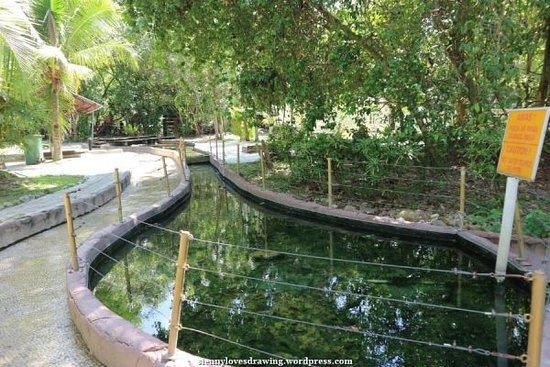 Sungai Klah Hot Spring Park: 1 of the hot springs pool within the park compound