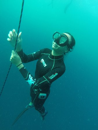 Ashmore, Australia: A student practicing freediving off the Gold Coast