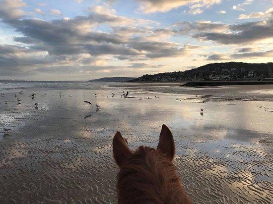 Blonville sur Mer, France: A cheval sur la plage. Centre équestre de Blonville.