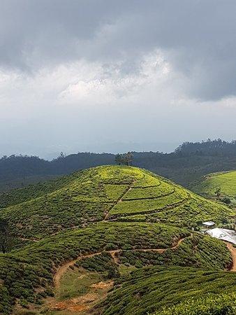 Central Province, سريلانكا: 20180304_121650_large.jpg