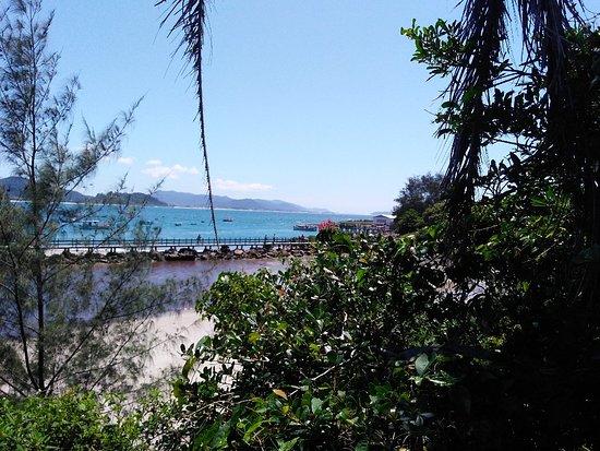 Matadeiro Beach: IMG_20180305_113206790_large.jpg