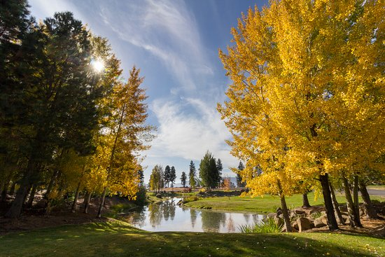 Running Y Ranch Resort Bild